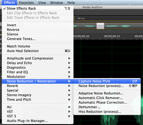 Adobe Audition Clean Noise